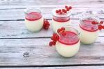 Joghurt-Panna cotta mit Johannisbeeren MINI