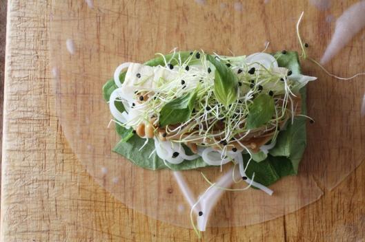 Tofu-Frühlingsrollen und Hoisinsauce III