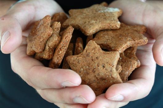 Lebkuchen Kekse I
