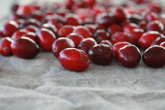 Cranberry-Kuchen II