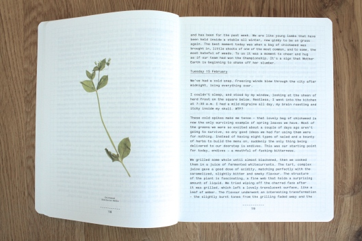 A Work in progress - Behind the scenes at celebrated restaurant Noma III